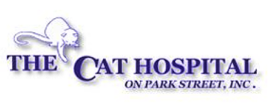 The Cat Hospital on Park Street – St. Petersburg Florida 33707